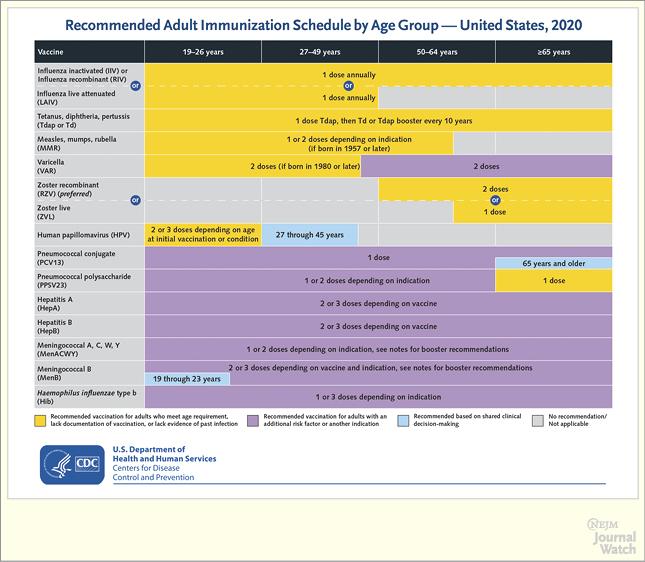 2020 U.S. Adult Immunization Schedule
